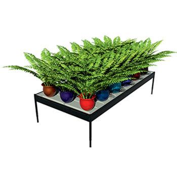 Экспозиторы для растений